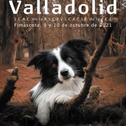 Cartel expo Valladolid 2021